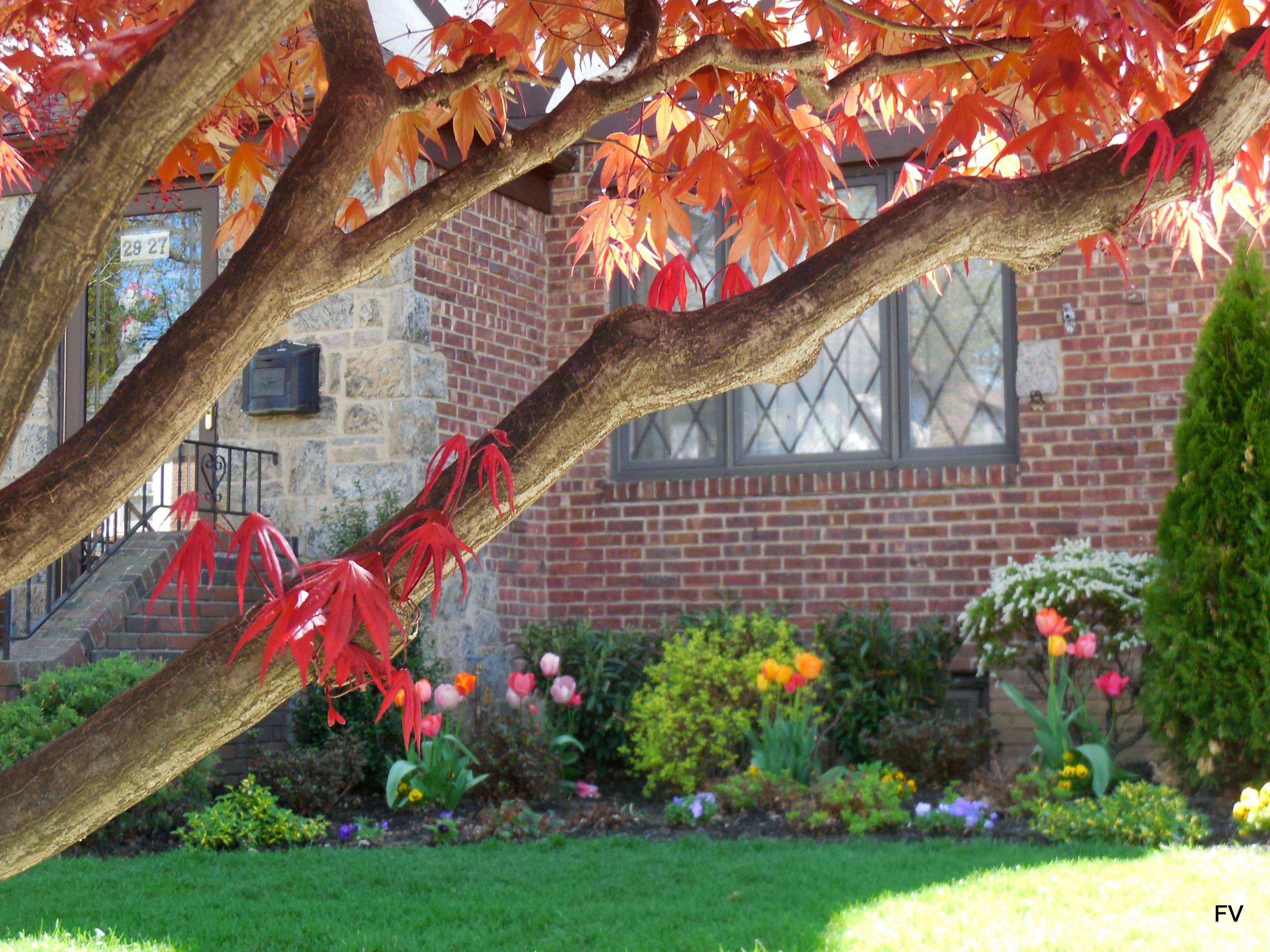 gardenawardwinner201929-27 168 St.A